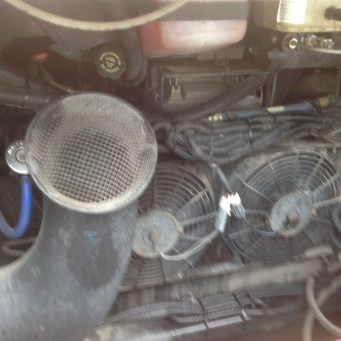 Engine compartment, 2006 Dolphin