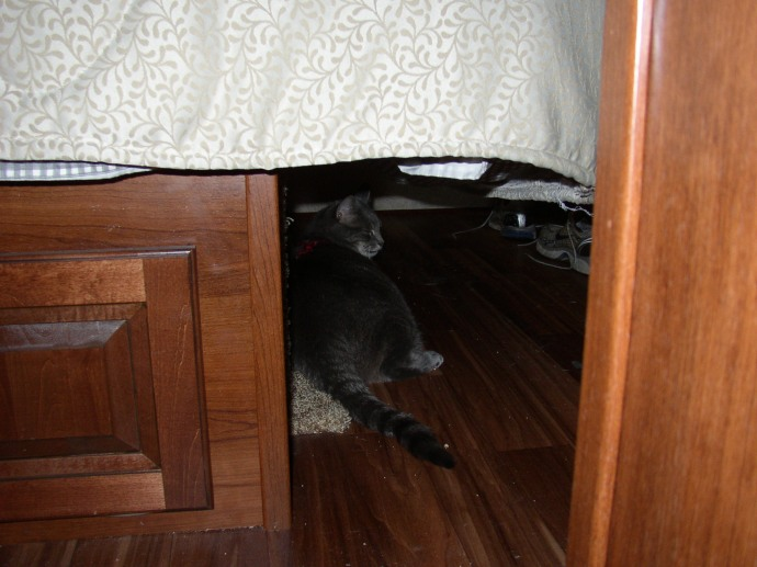 Milhouse under the end of the bed. Leave me alone!